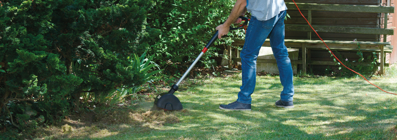 Electric lawn rakers